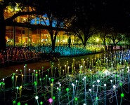 Green Label Features Bruce Munro's Field of Light