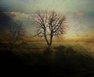 These inspiring panoramas unwind in pensive softness