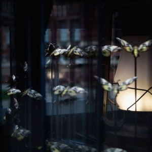 Matt Collishaw, Magic Lantern Small (Detail), 2010, Steel frame, glass, two-way mirror, aluminium, LED lights and motor, 235 x 114 x 114 cm