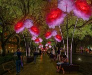 Enchanted Promenade: the exploration of light and its interplay with art, architecture and space