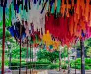 Houston Public Media: The Heart Of Downtown Is Now Bursting With Streamers