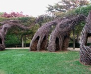 Austin360: Help build a cool Patrick Dougherty sculpture in Pease Park