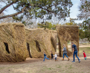Photos: Yippee Ki Yay by Patrick Dougherty in Austin