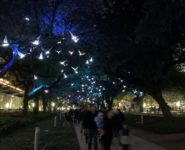 Houston Chronicle: Discovery Green's 'Paloma' Takes Flight with Sound and Light