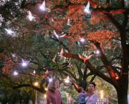 PaperCity: Magical Snowbirds Take Over Discovery Green in an Art Frenzy That Will Have You Seeing Double